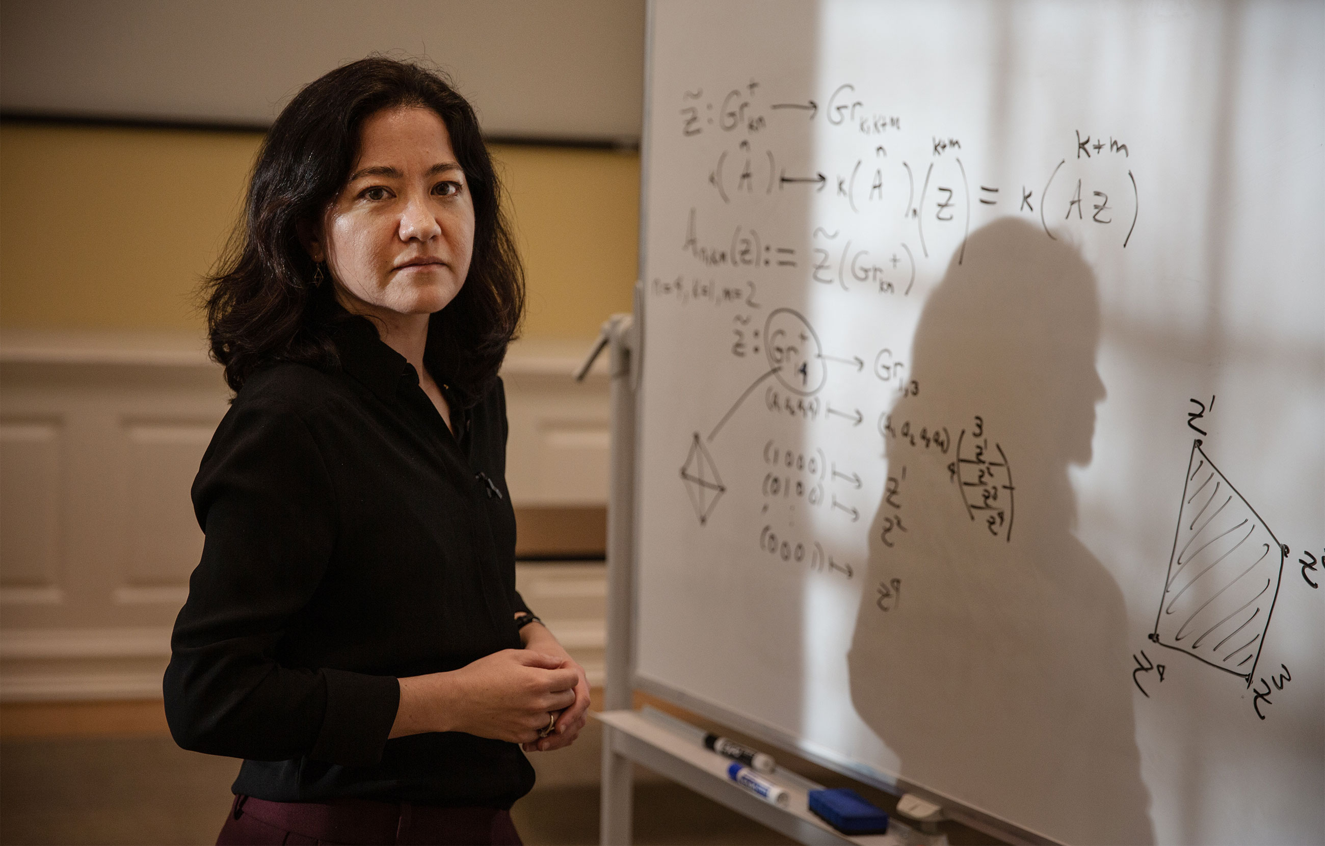 Mathematician Lauren Williams standing in front of a whiteboard that has mathematics written on it.