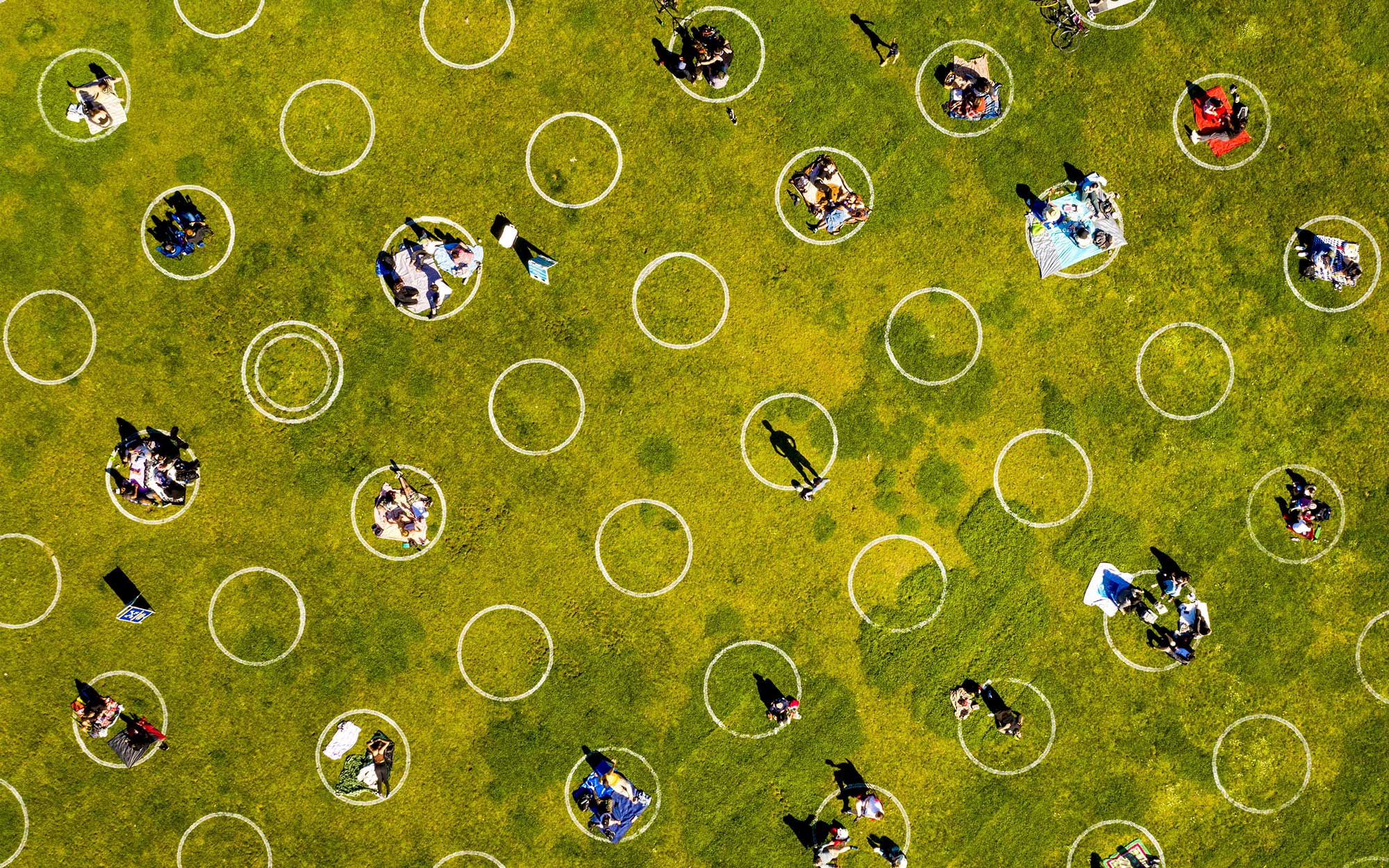 Aerial photo of small groups of people congregating on a green lawn in widely spaced circles.