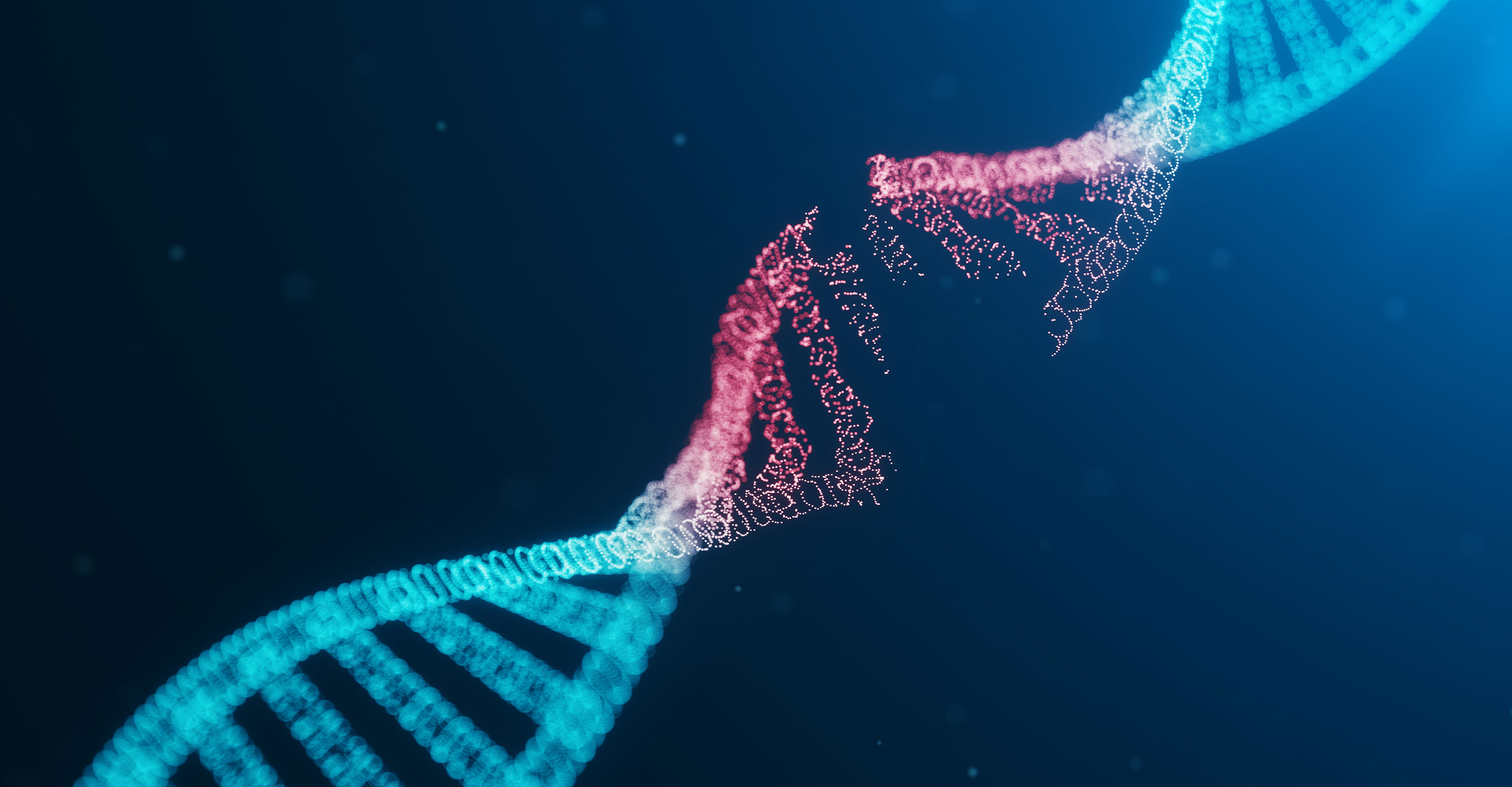 Artist's conception of DNA breaking.