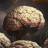 How Humans Evolved Supersize Brains